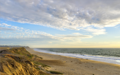 What's New Half Moon Bay Coastside, CA: September-December 2018